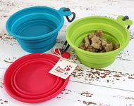 Dog Water Bowl in 3 Happy Colors