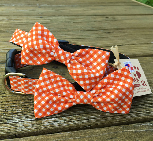 Checked Orange Dog Bow Tie Collars