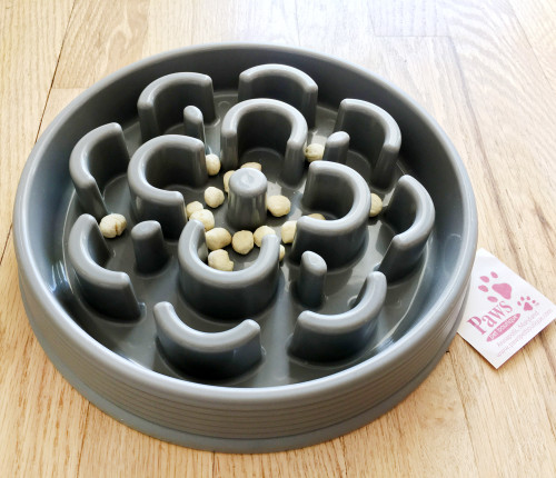 Attractive Slow-feed Dog Bowl