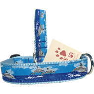 Dolphin Dog Collar