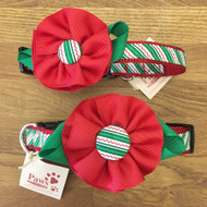 Holiday Striped Red Flower Dog Collars