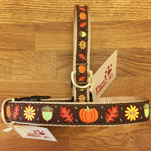Fall Pumpkin Dog Collars