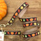 Harvest Fall Dog Leash (collar sold separately)
