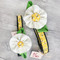 Buzzing Bee Flower Dog Collar Made in USA