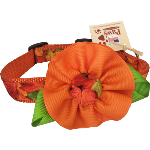 Fall Dog Collar with Detachable Flower