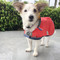 Stay dry and style dog rain coat