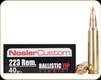 Nosler - 223 Rem - 40 Gr - Trophy Grade - Ballistic Tip Varmint - 20ct - 60001