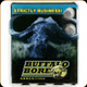 Buffalo Bore - Heavy 480 Ruger - 370 Gr - LBT Lead Flat Nose - 20ct - 13B