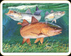 Tempered Glass Cutting Board - Redfish