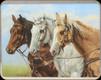"River's Edge - Horse - Tempered Glass Cutting Board - 12""x16"" - 788C"