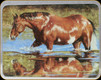 """River's Edge - Horse - Tempered Glass Cutting Board - 12""""x16"""" - 788D"""