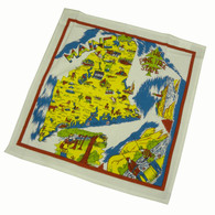 RWK Maine State Map Cotton Dish Towel 22x22 Inch