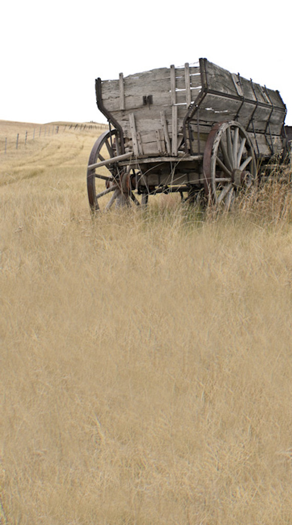 Old West Wagon Backdrop
