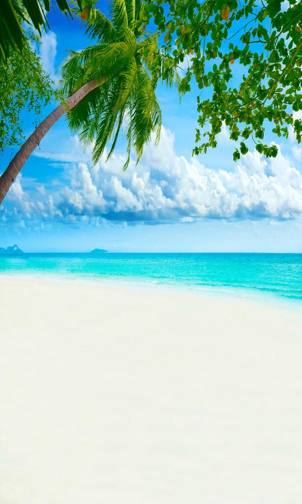 White Sands Backdrop