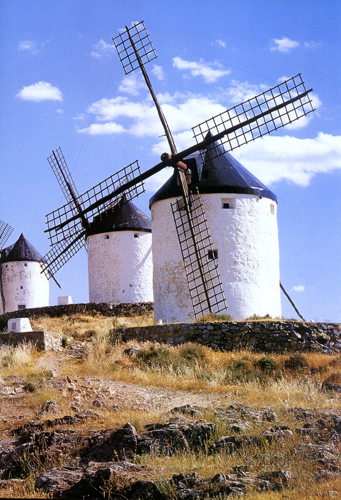 Old Dutch Windmills Backdrop