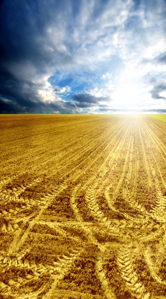 Tracked Field Backdrop