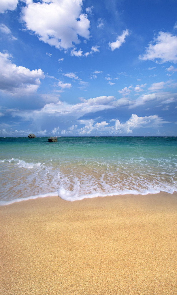 Sandy Beach Backdrop