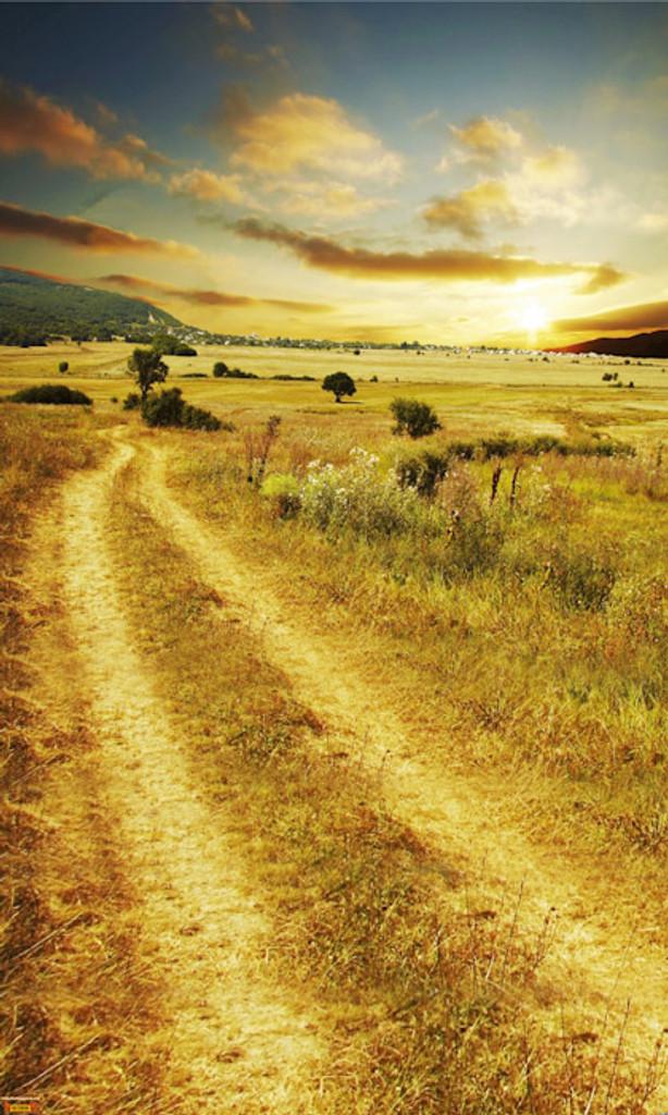 Pasture Road Backdrop