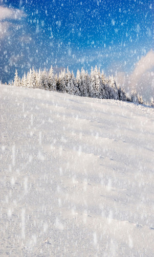 Snowy Hill Backdrop