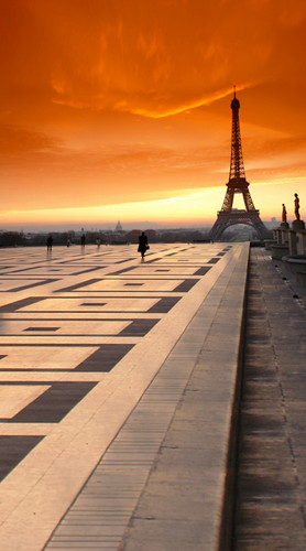 Paris At Sunset Backdrop