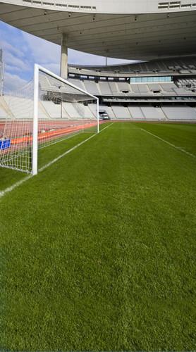 Soccer Stadium Backdrop