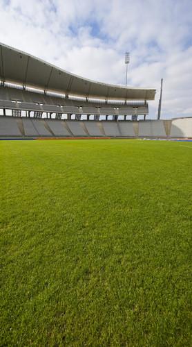 Sports Stadium Backdrop