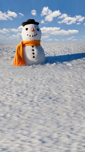 Happy Snowman Backdrop