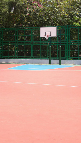 Outdoor Court Backdrop