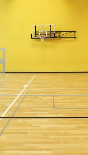 Indoor Court Backdrop