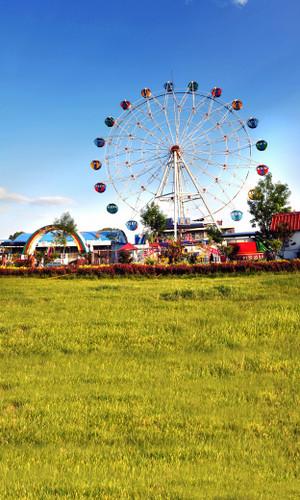 Ferris Wheel Backdrop