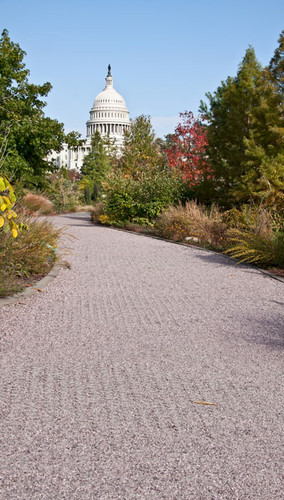 Garden View Capitol Backdrop