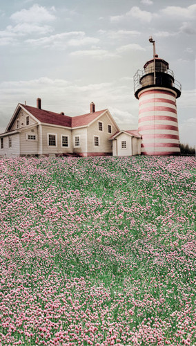 Lighthouse in Flowers Backdrop