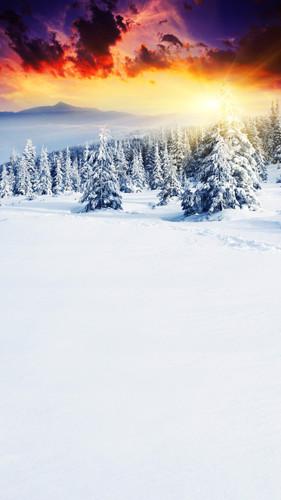 Sunburst Mountain Backdrop