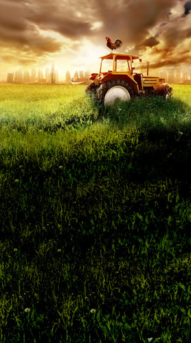 Tractor's Twilight Backdrop