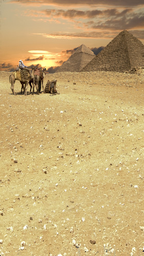 Pyramids At Sunset Backdrop