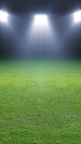 Sports Field Backdrop