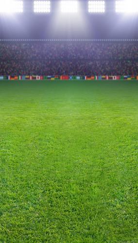 Full Stadium Backdrop