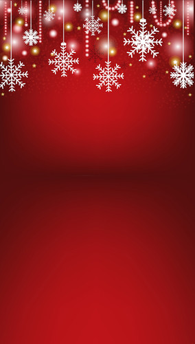 Snowflake Christmas Backdrop