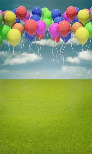 Balloons Away Backdrop