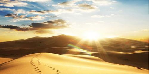 Dunes Wide Format