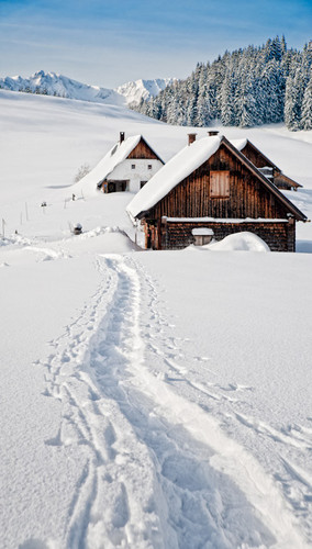Snowy Mountain Cabin Backdrop