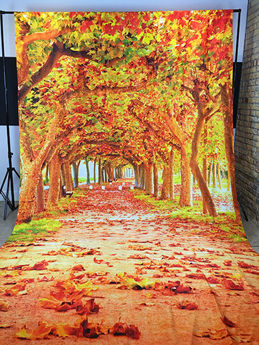 Fall Trail 9x16 PrismaCloth Backdrop