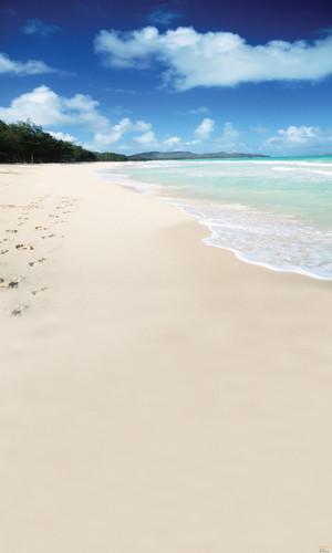 Sandy Getaway Backdrop
