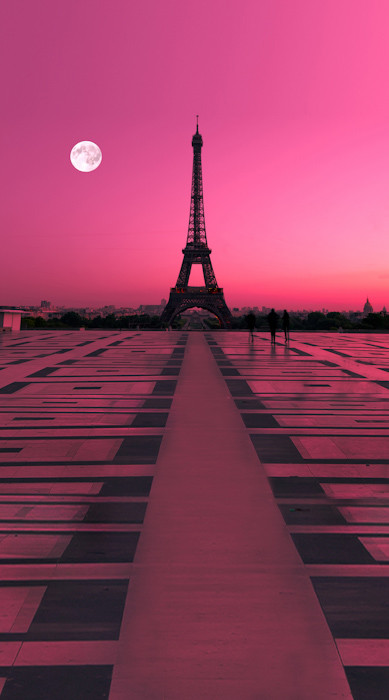 Rose Colored Paris Backdrop Photo Pie