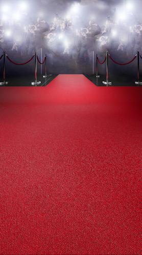 Red Carpet Paparazzi Backdrop Photo Pie