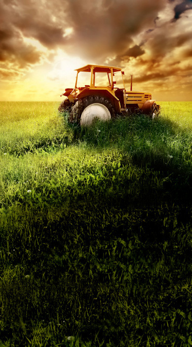 Tractor Sunset Backdrop Photo Pie