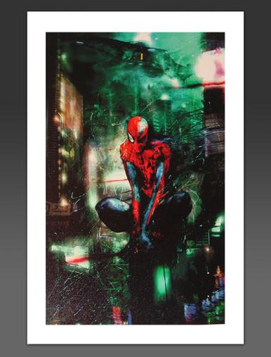 Spider-Man Timestorm 2009/2099 Canvas Giclee Marvel Artworks Cover