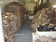 stockfish_warehouse_norway.jpg