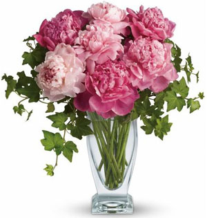 Luxury Flowers from the Rainflorist