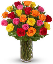 24 Assorted Colored Roses